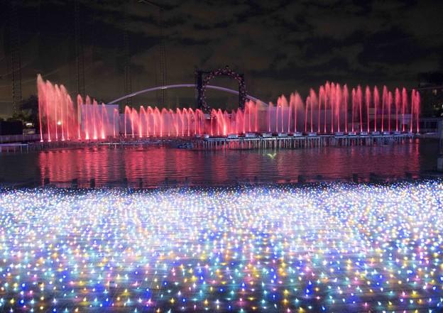 光と水の共演