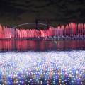 写真: 光と水の共演