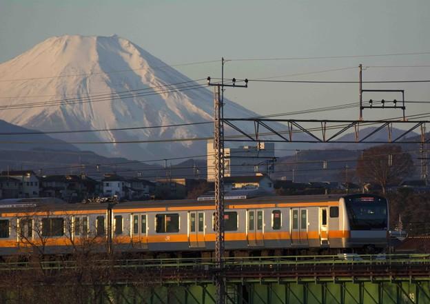 Photos: 列車が輝く頃