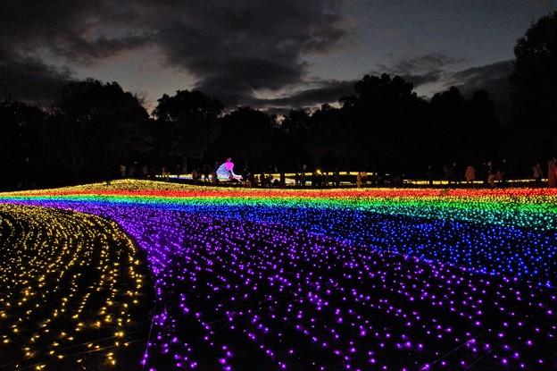 木曽三川公園イルミ
