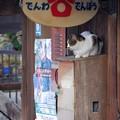 Photos: 電話ボックス