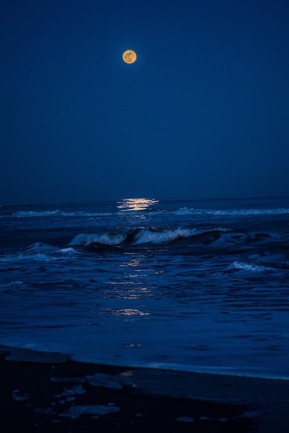 写真: 満月の夜