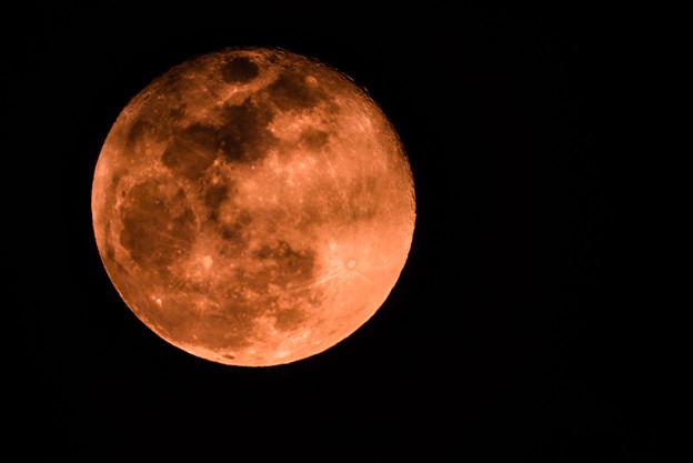 写真: 1日遅れの満月