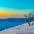 写真: 大地の目覚め