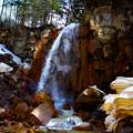 写真: 白藤の滝