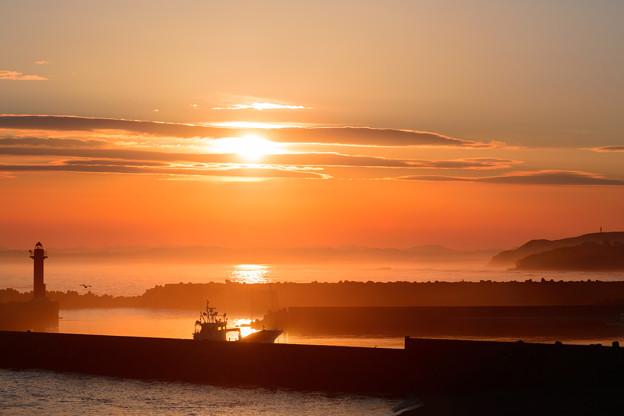 写真: 夕陽に染まって