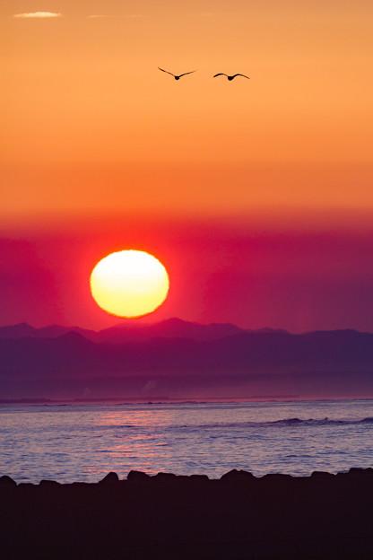写真: 夕陽にーーー