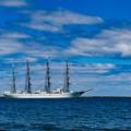 写真: ー帆船海王丸の出港ー