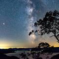 写真: ー木立越しの天の川ー