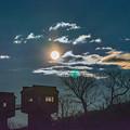写真: ー満月の夜ー