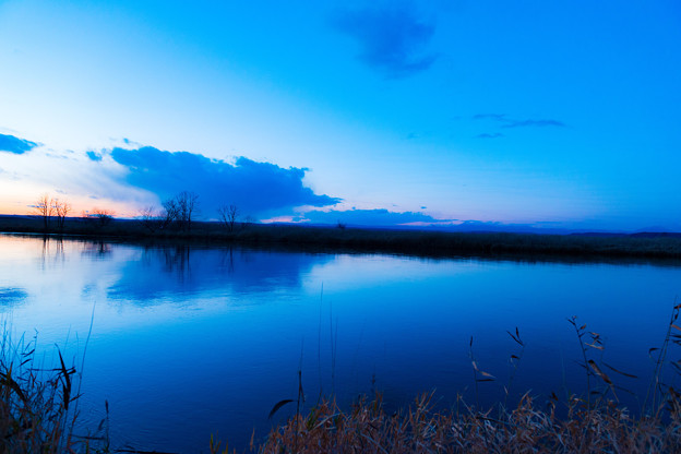 ー湿原のブルーモーメントー