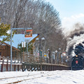 Photos: ー湿原駅到着ー