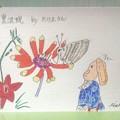 たけ丸さんの花と蝶