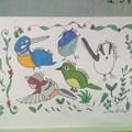lovely な小鳥さん大集合