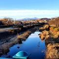 浅川から高尾山を拝む