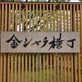 Photos: 20190726金シャチ横丁(30)