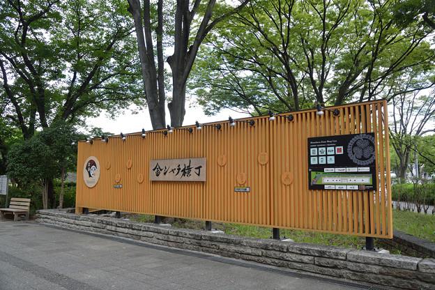 20190726金シャチ横丁(36)