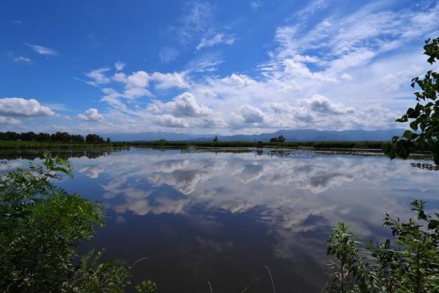 新潟 福島潟
