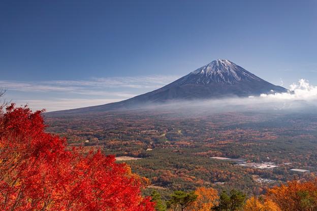 鳴沢村 紅葉台より望む富士山 その1