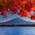 河口湖にて 紅葉と富士山 その2