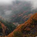 Photos: 小雨の中の紅葉 その1