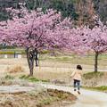 春、ランラン♪