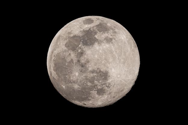 満月一歩手前(^-^;