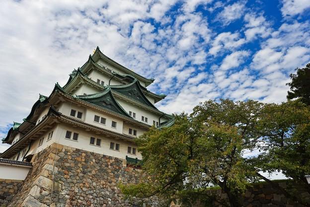 名古屋城にて その2