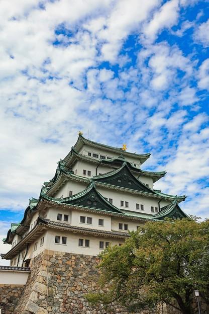 名古屋城にて その3