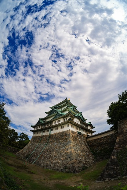 名古屋城にて その4
