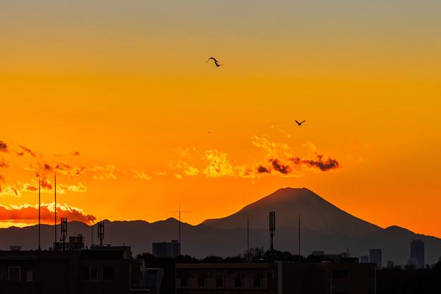 2021年初撮り 「日没後 富士遠景」