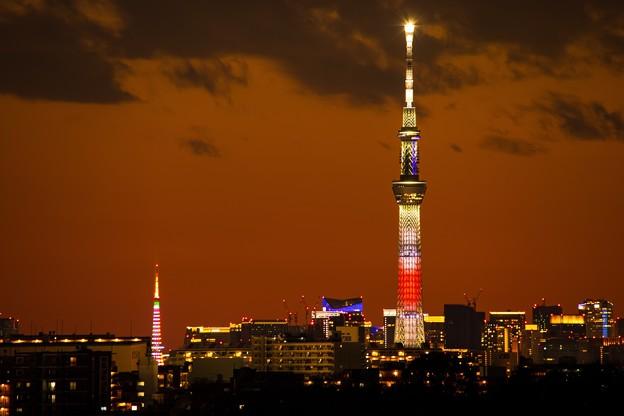 2021年初撮り「東京2大タワー」