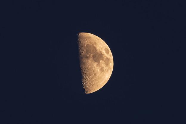 上弦の月~