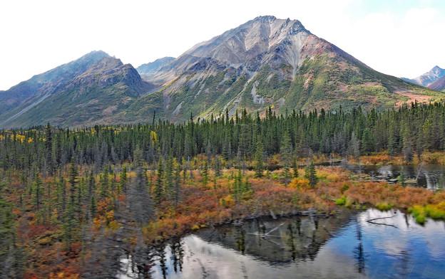 アラスカの山の秋色