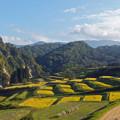 Photos: 山形県大蔵村の棚田