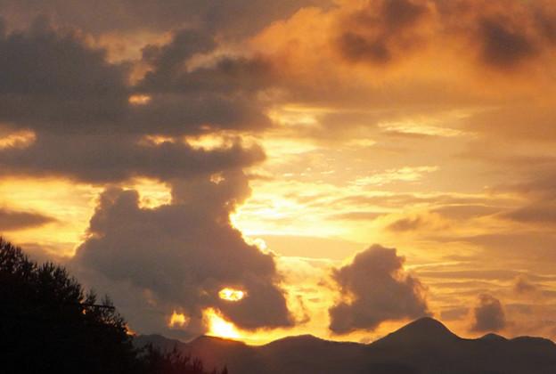 犬の親子のような夕焼け雲