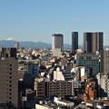 Photos: 冠雪富士遠望@渋谷