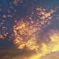 Photos: 雲三態  3) 「乳房雲」?それとも「うろこ雲」?