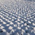 Photos: 雪の幾何学模様2