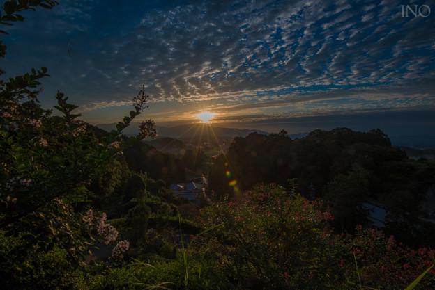 写真: 明日香の風景