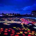 Photos: 平城宮に舞い降りた鳳凰