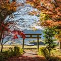 Photos: 晩秋の播州を走る