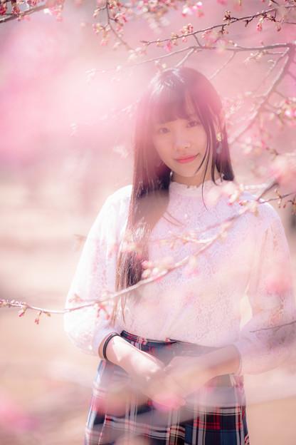 Photos: 君と二度目の春
