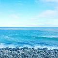 写真: 3月の熱海