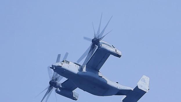 Osprey^a