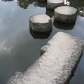 写真: 平安神宮にて。