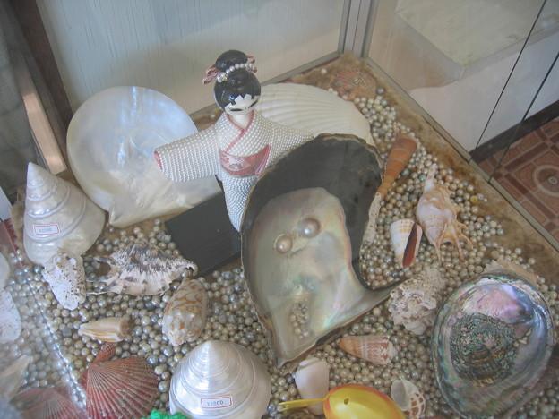 真珠の展示