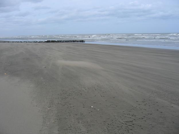 九十九里の砂浜