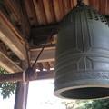 Photos: 法隆寺にて