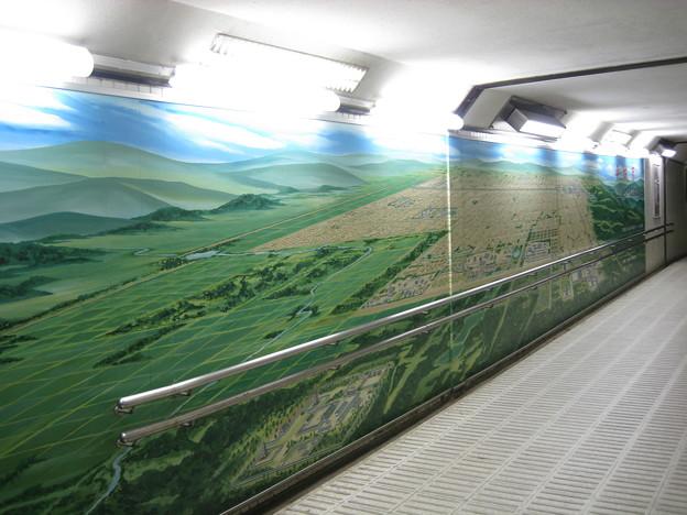 奈良公園近くの地下道